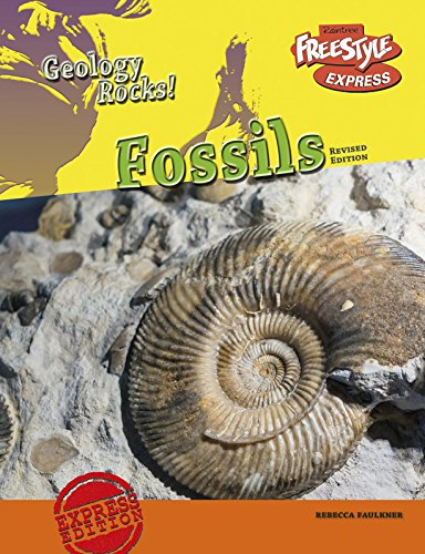 9781410986344: Fossils (Geology Rocks!)