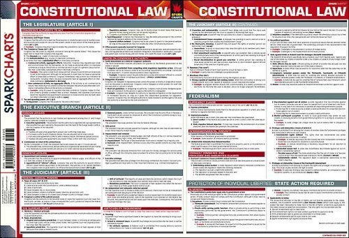 9781411400573: Constitutional Law SparkCharts