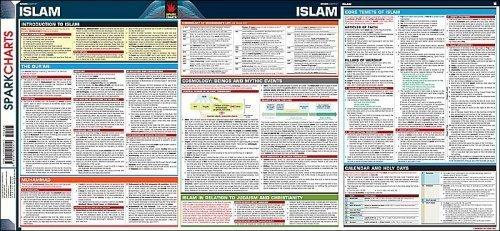 9781411400610: Islam SparkCharts