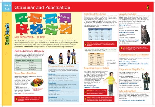 9781411469297: Grammar and Punctuation FlashCharts