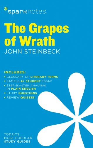 an analysis of the theme of desperation in the grapes of wrath by john steinbeck But the imagery of the film reveals the important theme of the joad family's coherence the movie shows [chris mcgreal journeys along route 66 - following the path of the joads, of john steinbeck's the grapes of wrath, to compare that account of the great depression with today's united.