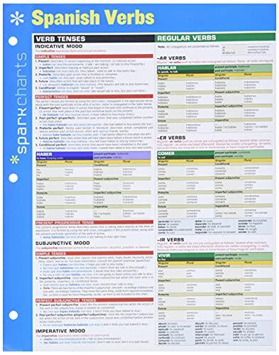 9781411470835: Spanish Verbs (Sparkcharts)