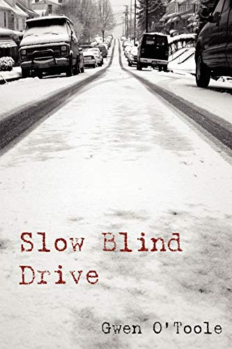 9781411614178: Slow Blind Drive