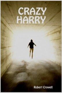 9781411654341: Crazy Harry