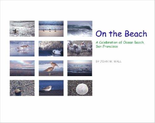 9781411683327: On the Beach: A Celebration of Ocean Beach, San Francisco