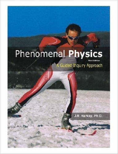 9781411688827: Phenomenal Physics