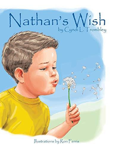 9781412021692: Nathan's Wish