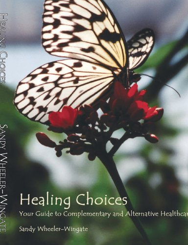 9781412039956: Healing Choices: Your Guide to Complementary and Alternative Healthcare
