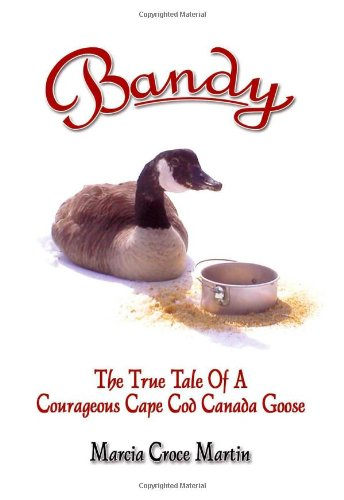 9781412042895: Bandy: The True Tale of a Courageous Cape Cod Canada Goose