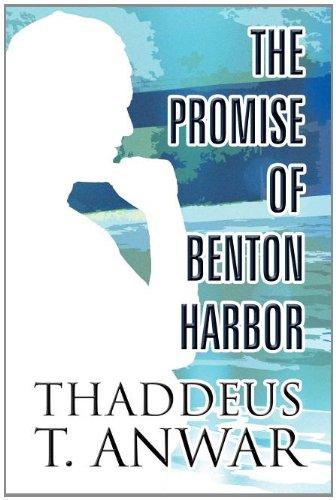 9781413770322: The Promise of Benton Harbor