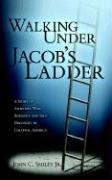 9781414106823: Walking Under Jacob's Ladder