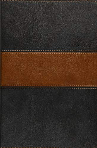 9781414387659: Holy Bible NLT, Personal Size Large Print edition