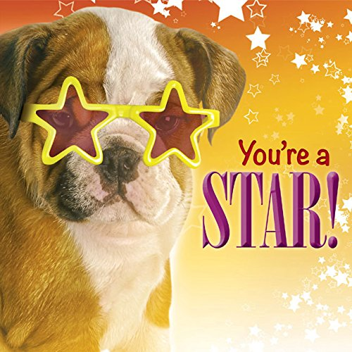 You're a Star!: Struik Inspirational Gifts