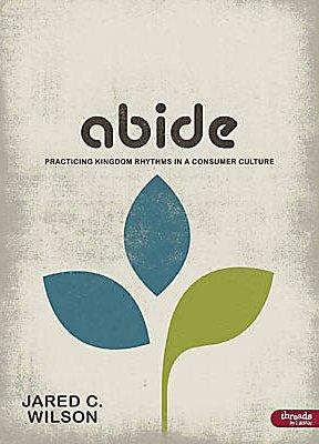 ABIDE: PRACTICING KINGDOM RHYTHMS IN A CONSUMER CULTURE - MEMBER BOOK