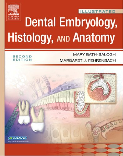 9781416024996: Illustrated Dental Embryology, Histology, and Anatomy, 2e (Illustrated Colour Text)