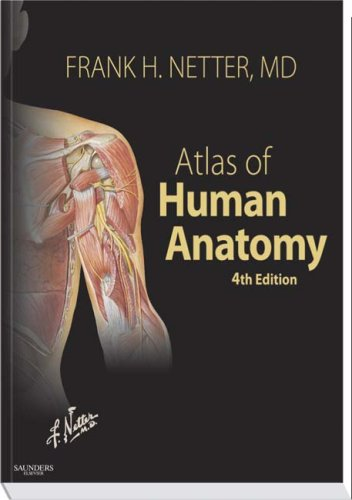 Atlas of Human Anatomy, 4th Edition (Netter: Netter MD, Frank