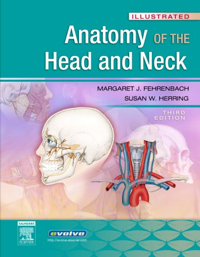 9781416034032: Illustrated Anatomy of the Head and Neck, 3e (Fehrenbach, Illustrated Anatomy of the Head and Neck)