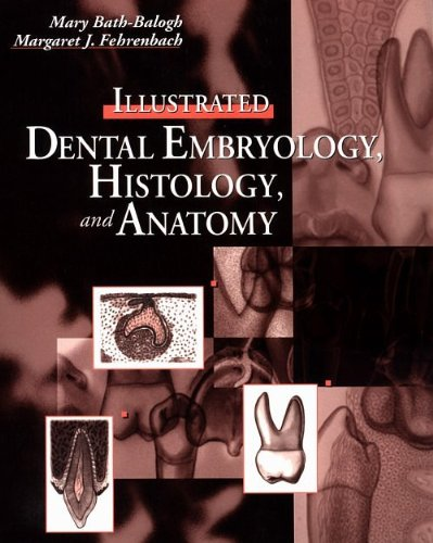 9781416034728: Illustrated Dental Embryology, Histology and Anatomy, 2e