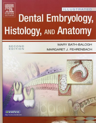 9781416036067: Illustrated Dental Embryology, Histology, and Anatomy 2e and Illustrated Anatomy of the Head and Neck 3e Package