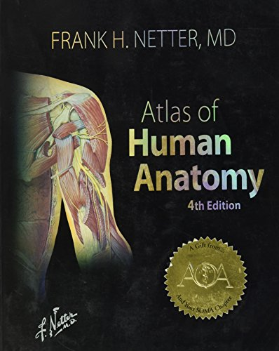 Atlas Of Human Anatomy 4th International Edition By Frank H