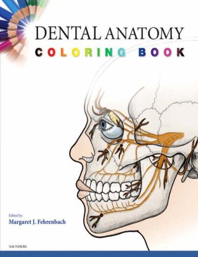 9781416047896: Dental Anatomy Coloring Book, 1e