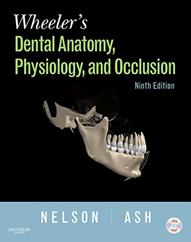 9781416062097: Wheeler's Dental Anatomy, Physiology and Occlusion, 9e