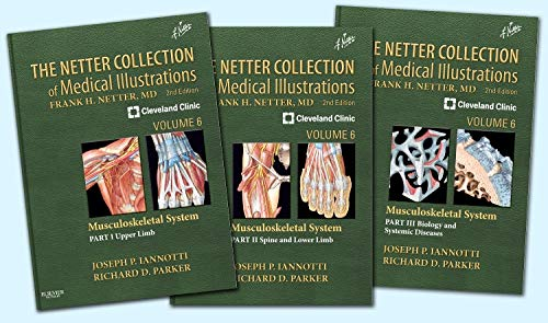 The Netter Collection of Medical Illustrations- Musculoskeletal System Package (Hardcover): Joseph ...