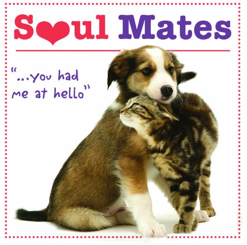 "Soul Mates "".you had me at hello"": Robin Haywood"