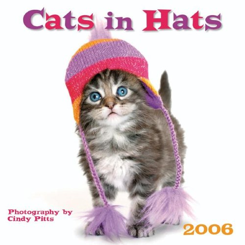 Cats in Hats: Cindy Pitts (Photographer)