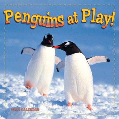 9781416280408: Penguins at Play 2009 Wall Calendar (Calendar)