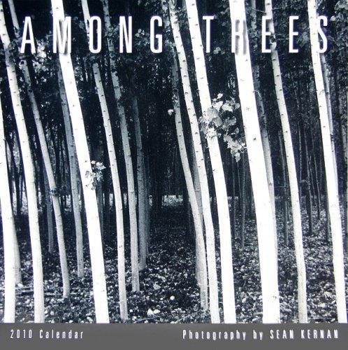 Among Trees 2010 Mini Wall Calendar (Calendar): Sean Kernan