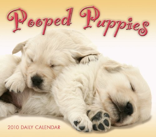 Pooped Puppies 2010 Daily Boxed Calendar (Calendar): Sellers Publishing Inc