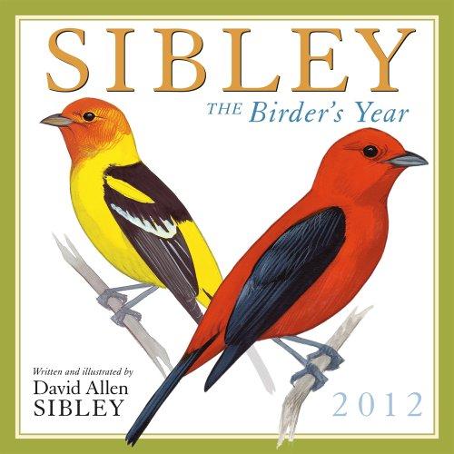 9781416287018: Sibley: The Birder's Year 2012 Wall (calendar)