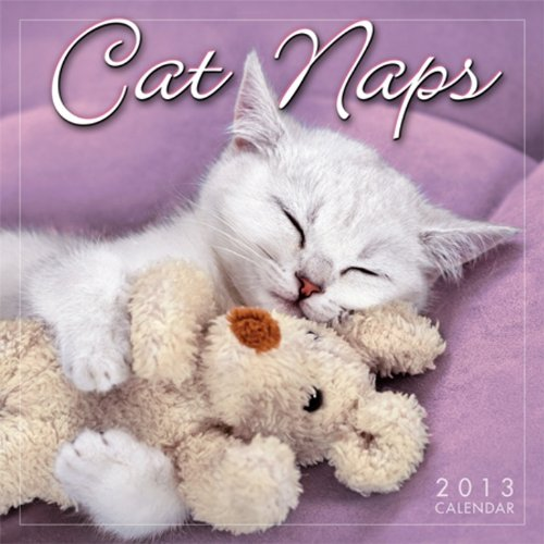 9781416289777: Cat Naps 2013 Mini (calendar)