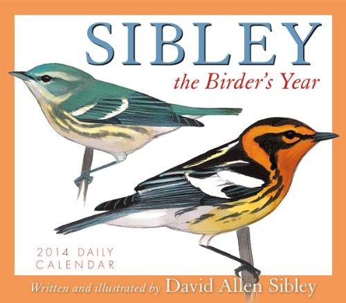 9781416294689: Sibley the Birder's Year