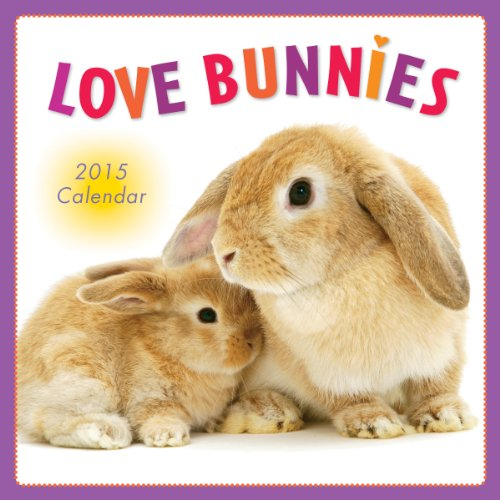 9781416295372: Love Bunnies 2015 Wall Calendar