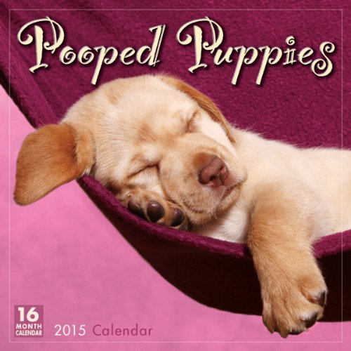 Pooped Puppies 2015 Wall Calendar: Sellers Publishing Inc