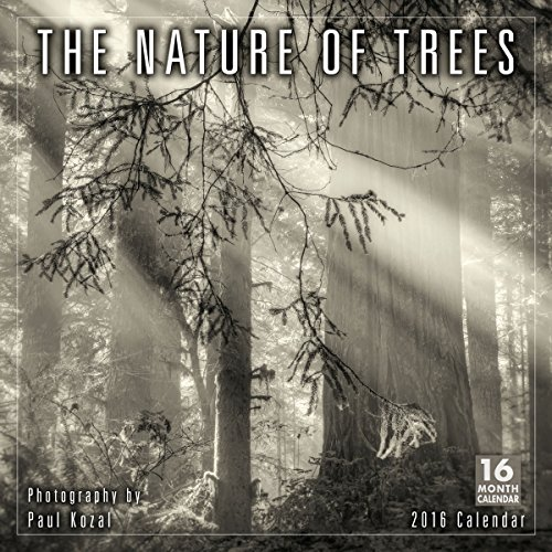 Nature of Trees 2016 Wall Calendar: Kozal, Paul
