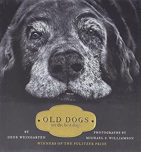 9781416534990: Old Dogs: Are the Best Dogs