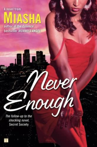 9781416553380: Never Enough: A Novel