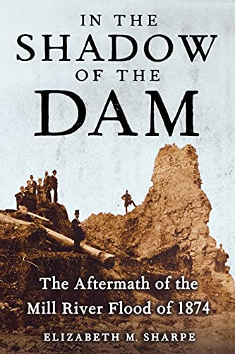 9781416572640: In the Shadow of the Dam: The Aftermath of the Mill River Flood of 1874
