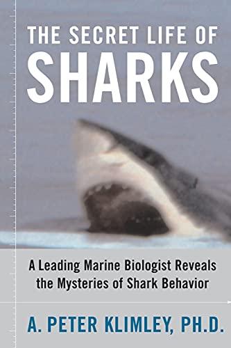 9781416578338: The Secret Life of Sharks: A Leading Marine Biologist Reveals the Mysteries of Shark Behavior