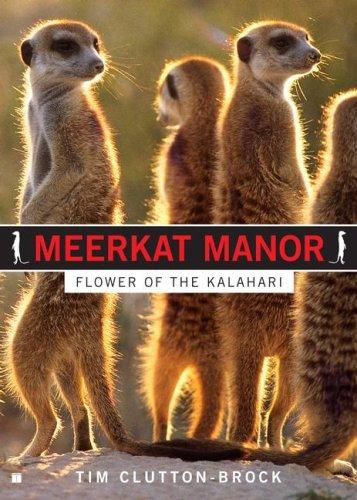 9781416587675: Meerkat Manor: Flower of the Kalahari