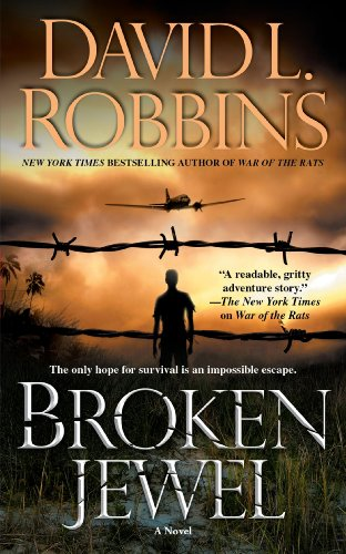 9781416590613: Broken Jewel: A Novel