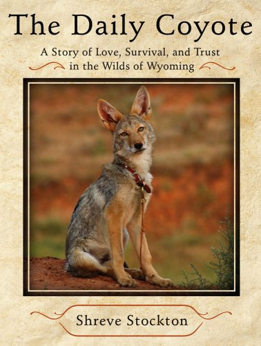 9781416592181: The Daily Coyote: A Story of Love, Survival, and Trust in the Wilds of Wyoming