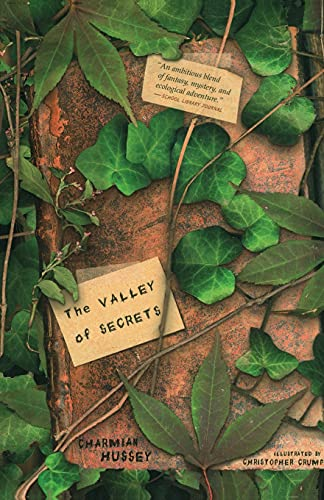 9781416900153: The Valley of Secrets