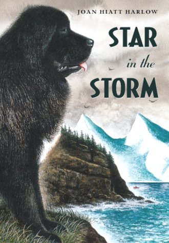 9781416905301: Star in the Storm (Aladdin Historical Fiction)