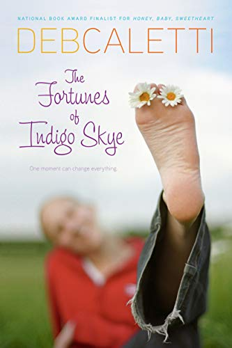 9781416910084: The Fortunes of Indigo Skye
