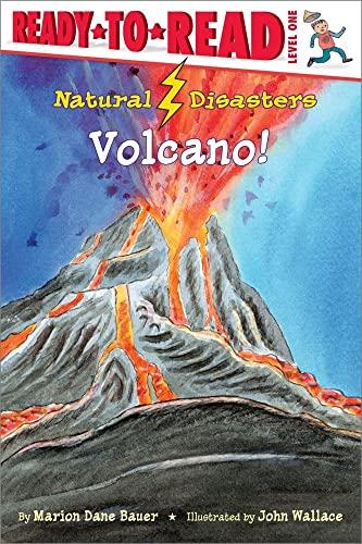 9781416925491: Volcano! (Natural Disasters)