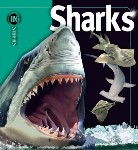 Sharks (Insiders (Simon and Schuster)): McMillan, Beverly, Musick,